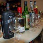 Gin Tasting - Den Wacholderbrand in seiner Vielfalt kennen lernen.