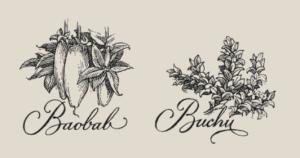 Zwei der 14 Botanicals im Elephant Gin