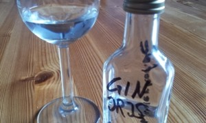 Iris Dry Gin Sample