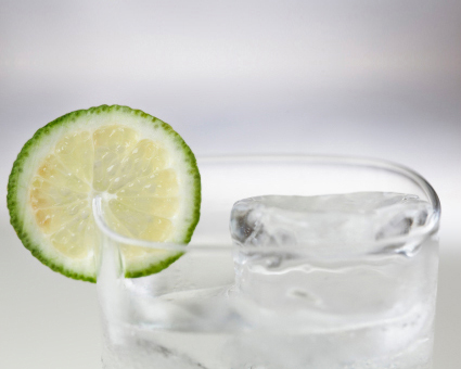 gin tonic geschichte rezept f r den perfekten gin tonic der ginobility gin blog. Black Bedroom Furniture Sets. Home Design Ideas