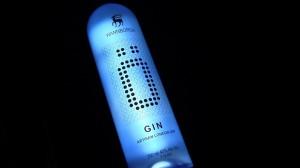 Wannborga Ö Gin